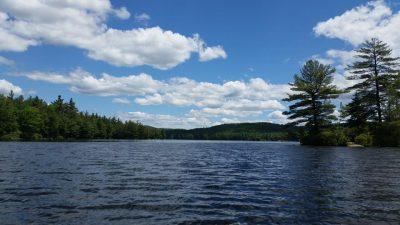 Grafton Pond